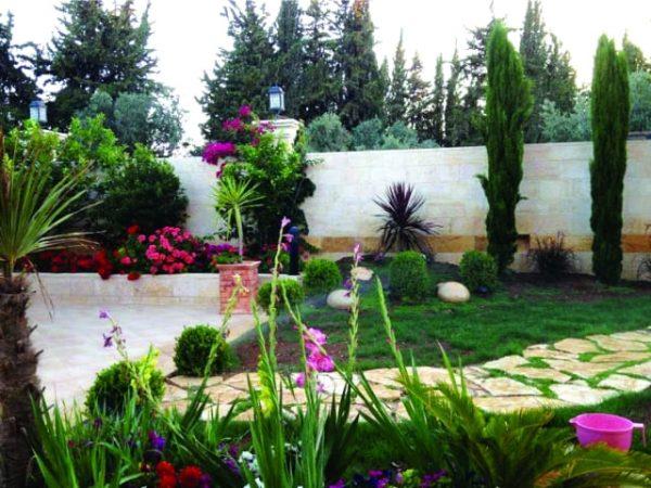 تنسيق حدائق حي الواحة