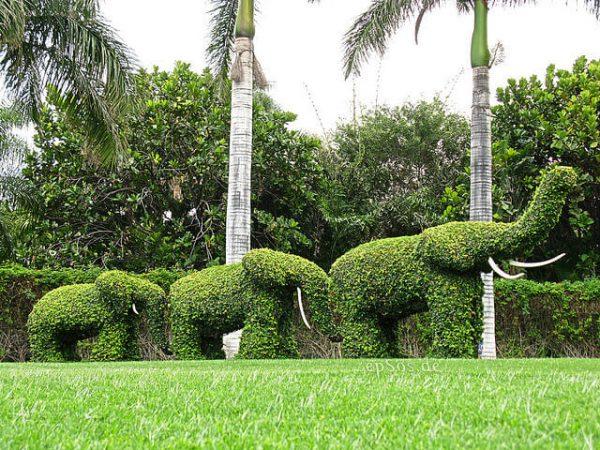تنسيق حدائق حي الاندلس