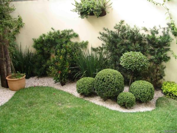 تنسيق حدائق حي مشرفة