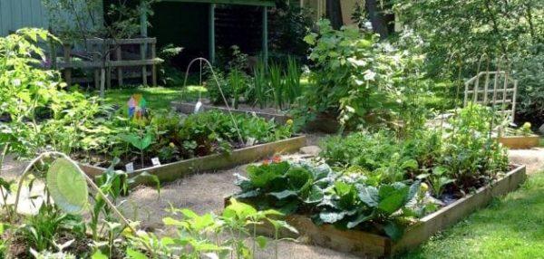 تنسيق حدائق حي المنتزهات